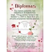 Diplomas seneliams (D-08)