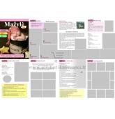 Krikštynų laikraštukas / žurnalas (Pavyzdys nr 3)
