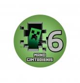 Gimtadienio ženkliukas - Minecraft 6m.