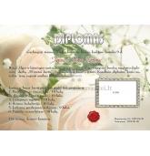 Koralinių vestuvių diplomas (VMKORAL-01)