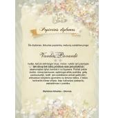 Pirmųjų vestuvių metinių diplomas