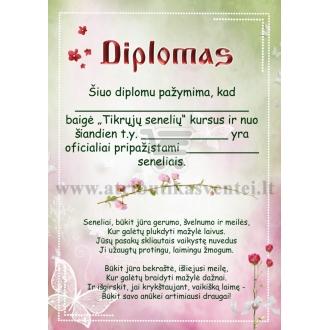 Diplomas seneliams (mergaitės)