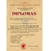 Idealaus vyro diplomas