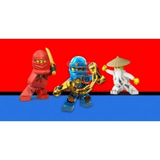"Etiketė ""Lego Ninjago"""