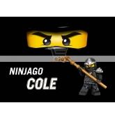 "Maža etiketė ""Lego Ninjago"" Juoda-Cole"