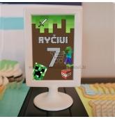 """Paveiksliukas, stalo dekoracija """"Minecraft"""""""